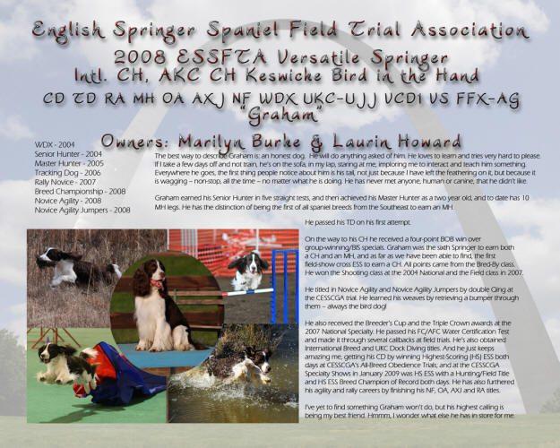 2008 ESSFTA Versatile Springer